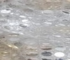silver ~ white HIGH QUALITY SEQUINS FABRIC 6mm
