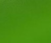 neon green Bi-Stretch Neoprene Fabric 4mm - 900g